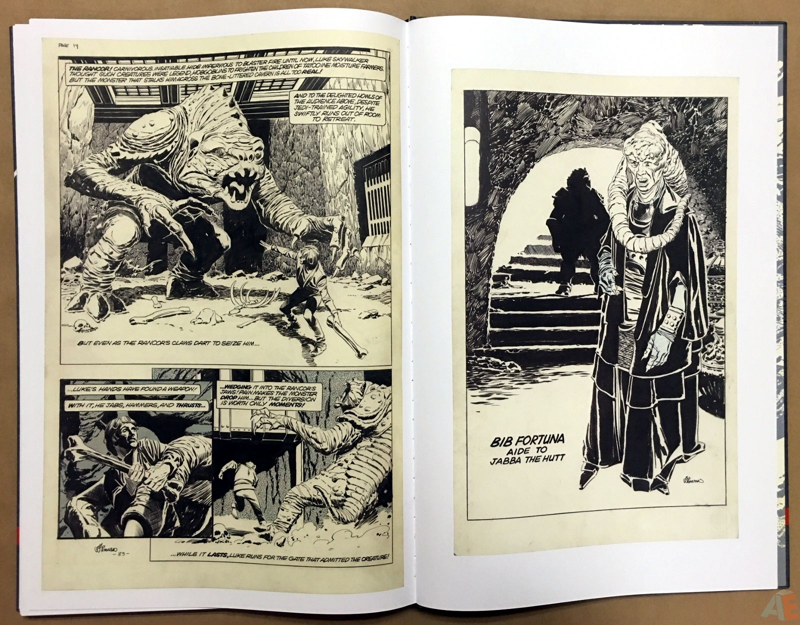 Al Williamson's Star Wars: The Empire Strikes Back Artist's Edition 48