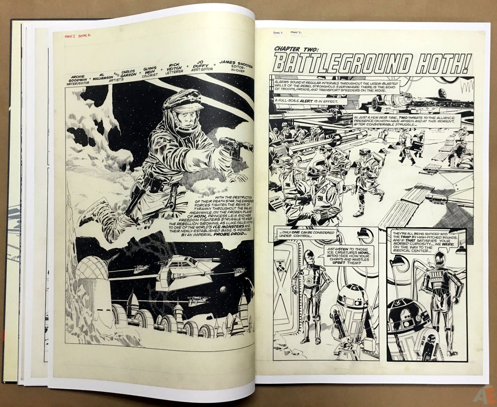 Al Williamson's Star Wars: The Empire Strikes Back Artist's Edition 12