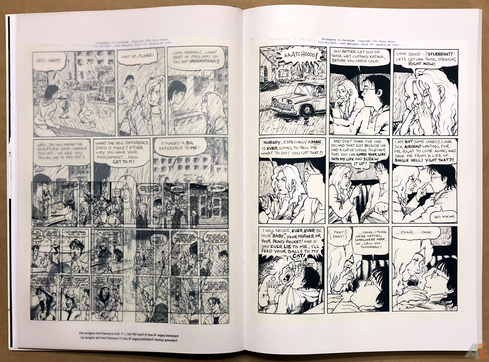 Terry Moore Strangers In Paradise Gallery Edition 10