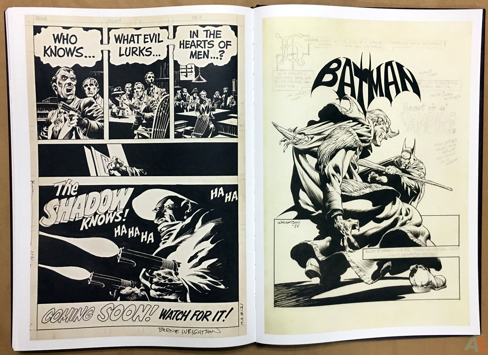 Bernie Wrightson Artifact Edition 54