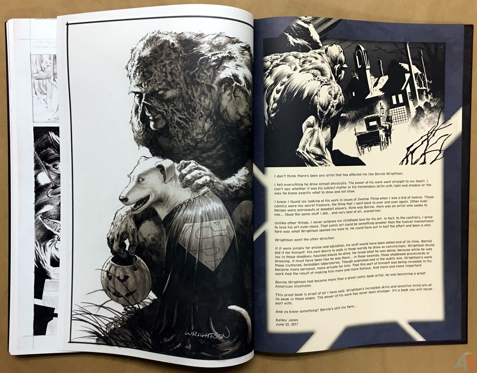 Bernie Wrightson Artifact Edition 56