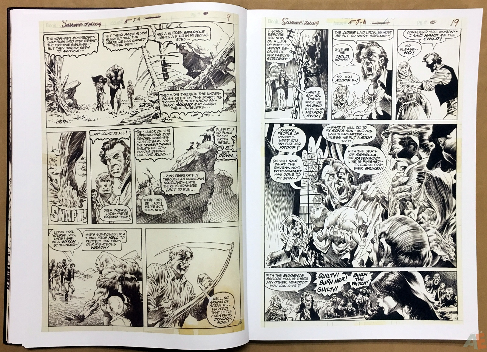 Bernie Wrightson Artifact Edition 20