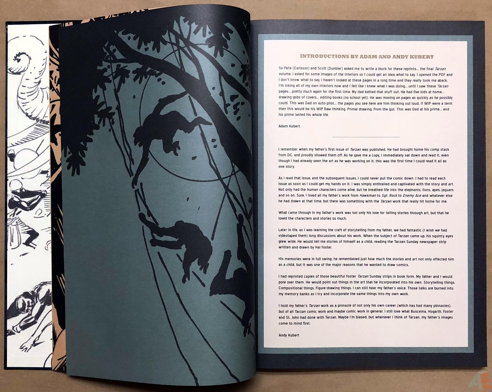 Joe Kubert's Tarzan and the Lion Man Artist's Edition 6