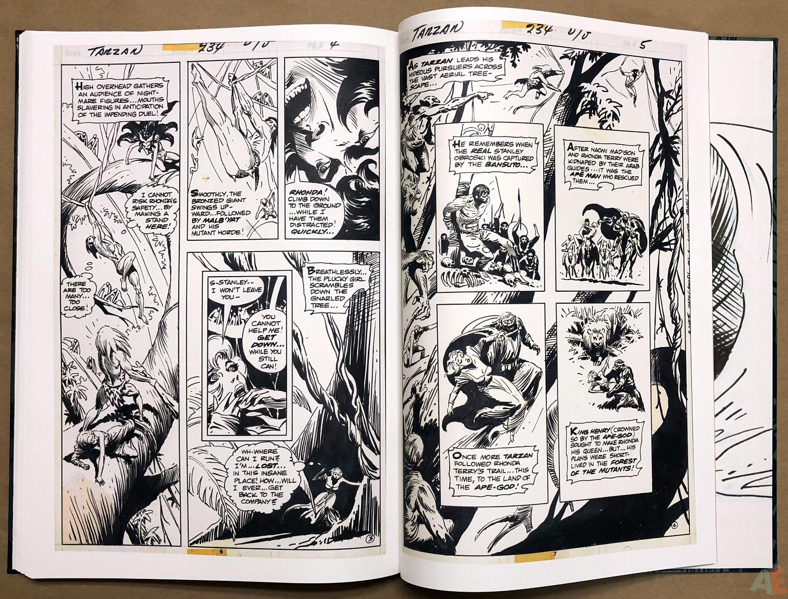 Joe Kubert's Tarzan and the Lion Man Artist's Edition 42