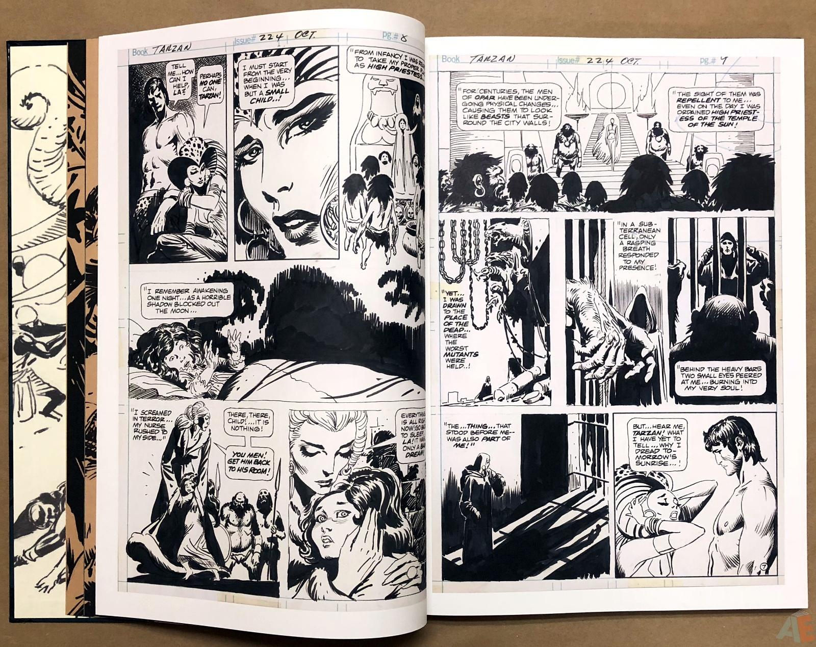 Joe Kubert's Tarzan and the Lion Man Artist's Edition 12