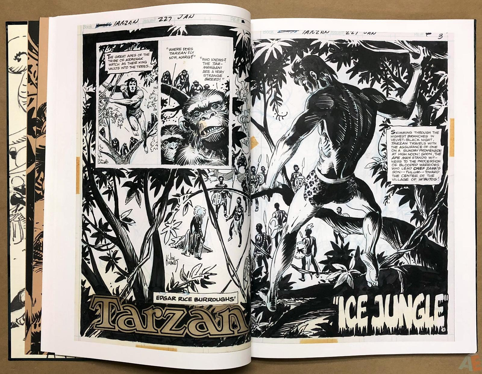 Joe Kubert's Tarzan and the Lion Man Artist's Edition 18