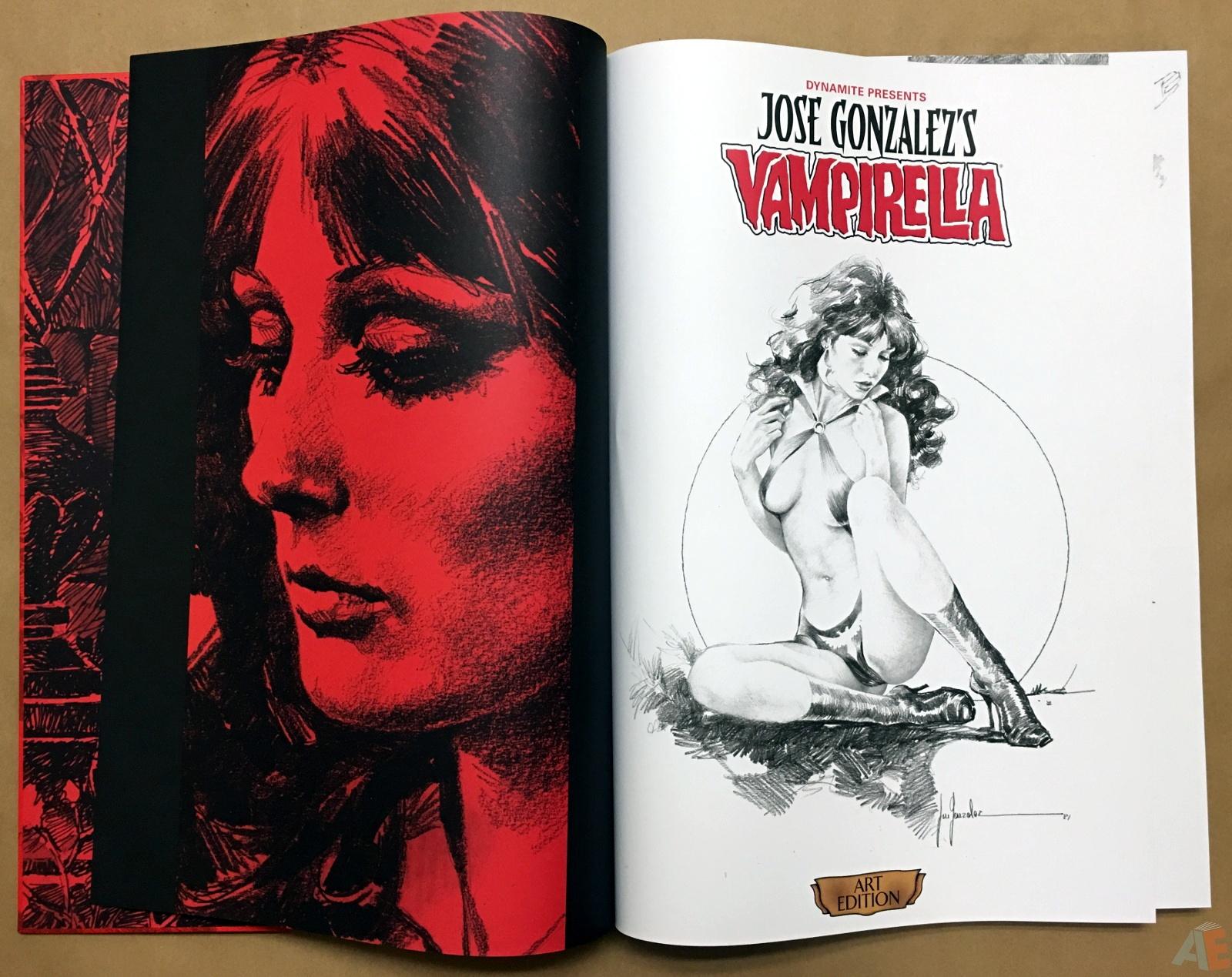 Jose Gonzalez's Vampirella Art Edition Vol 1 4