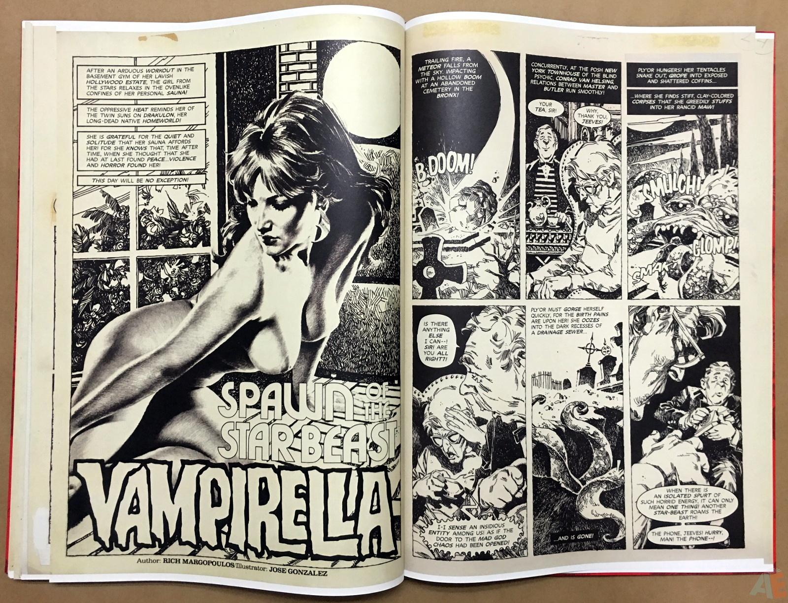 Jose Gonzalez's Vampirella Art Edition Vol 1 48