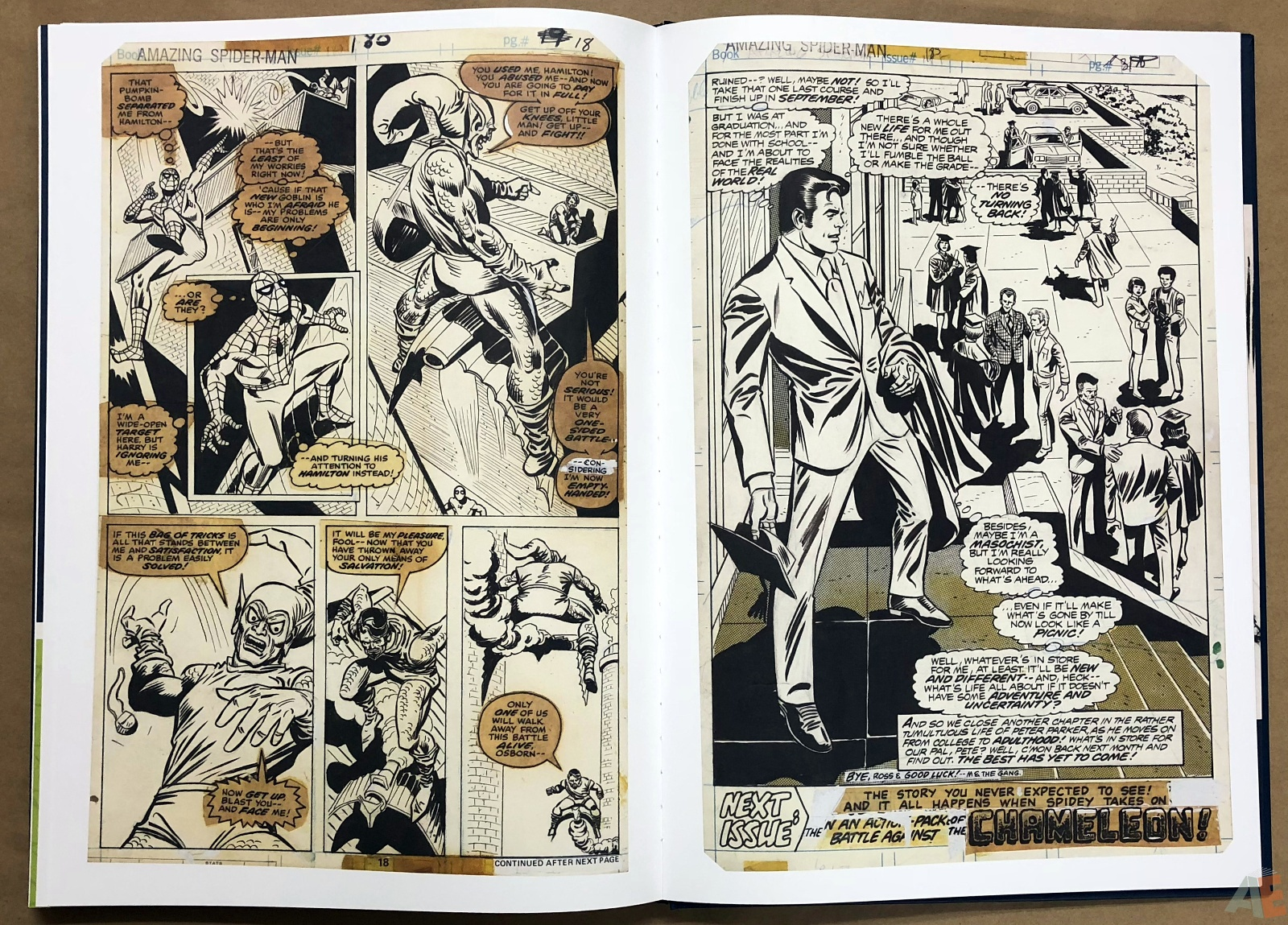 Ross Andru's The Amazing Spider-Man Artist's Edition 42