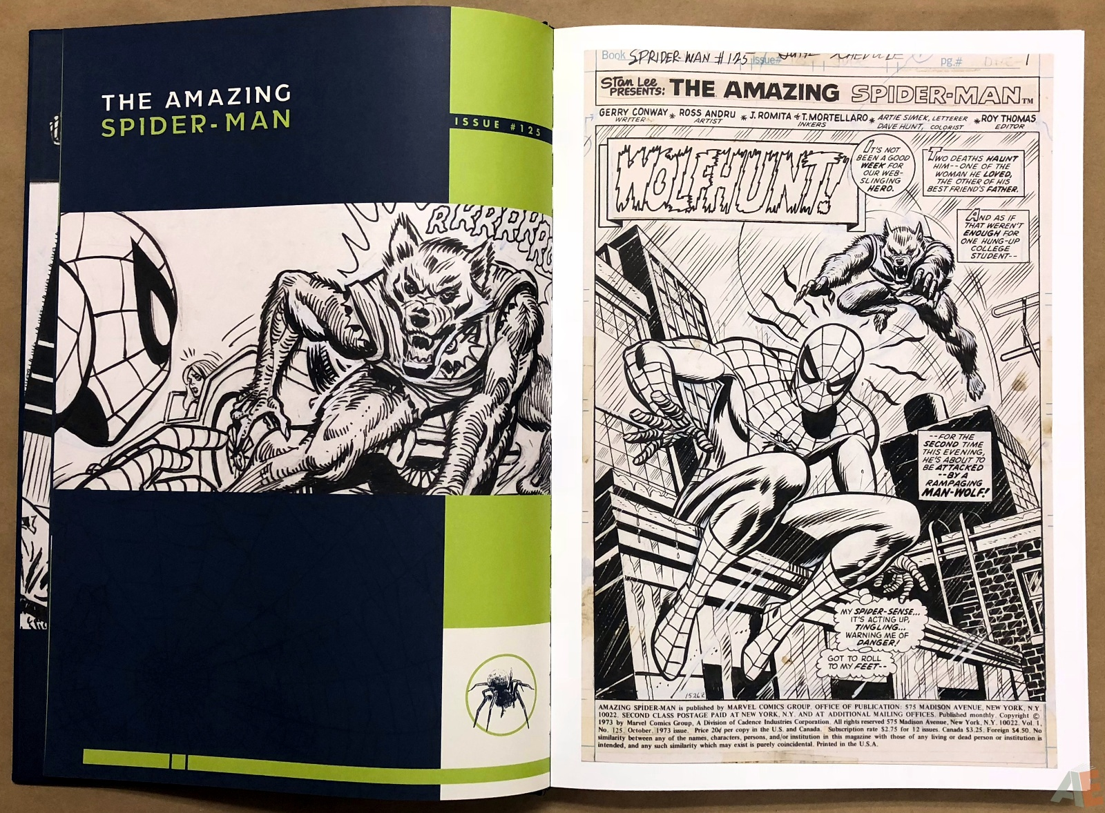 Ross Andru's The Amazing Spider-Man Artist's Edition 10