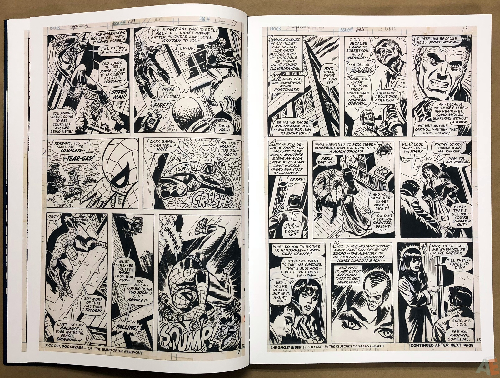 Ross Andru's The Amazing Spider-Man Artist's Edition 12