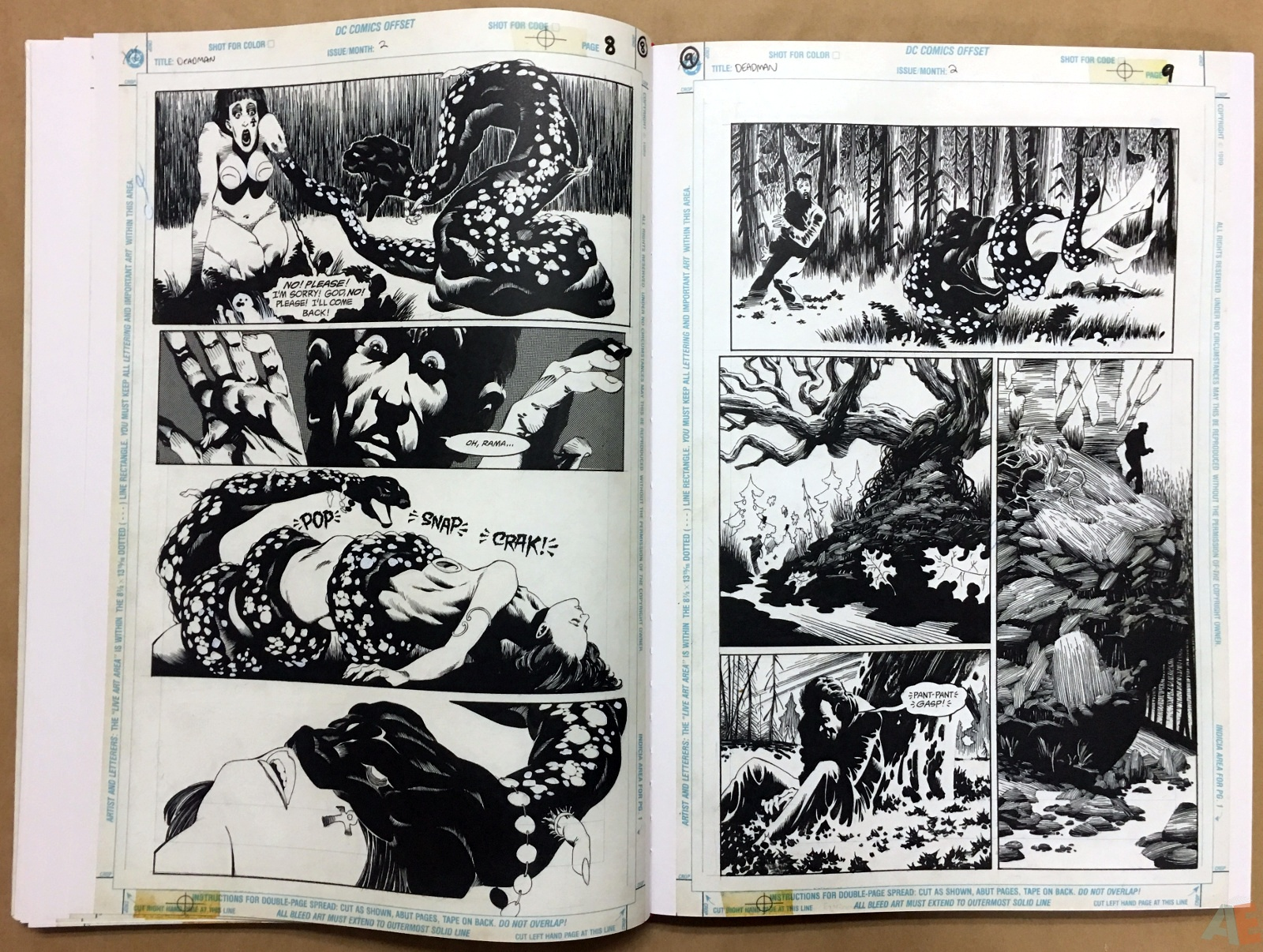 Deadman: Kelley Jones Gallery Edition 22