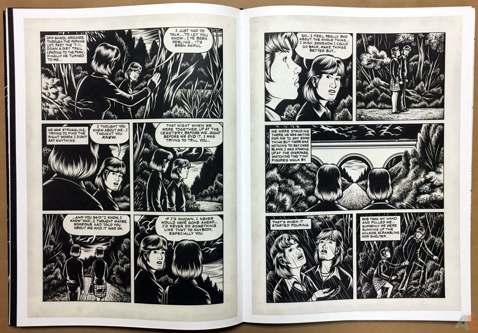 Fantagraphics Studio Edition: Black Hole By Charles Burns 22