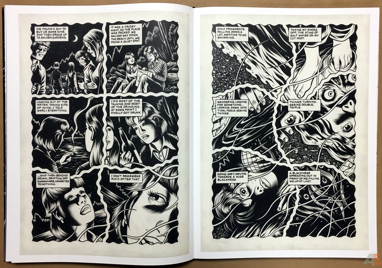 Fantagraphics Studio Edition: Black Hole By Charles Burns 24