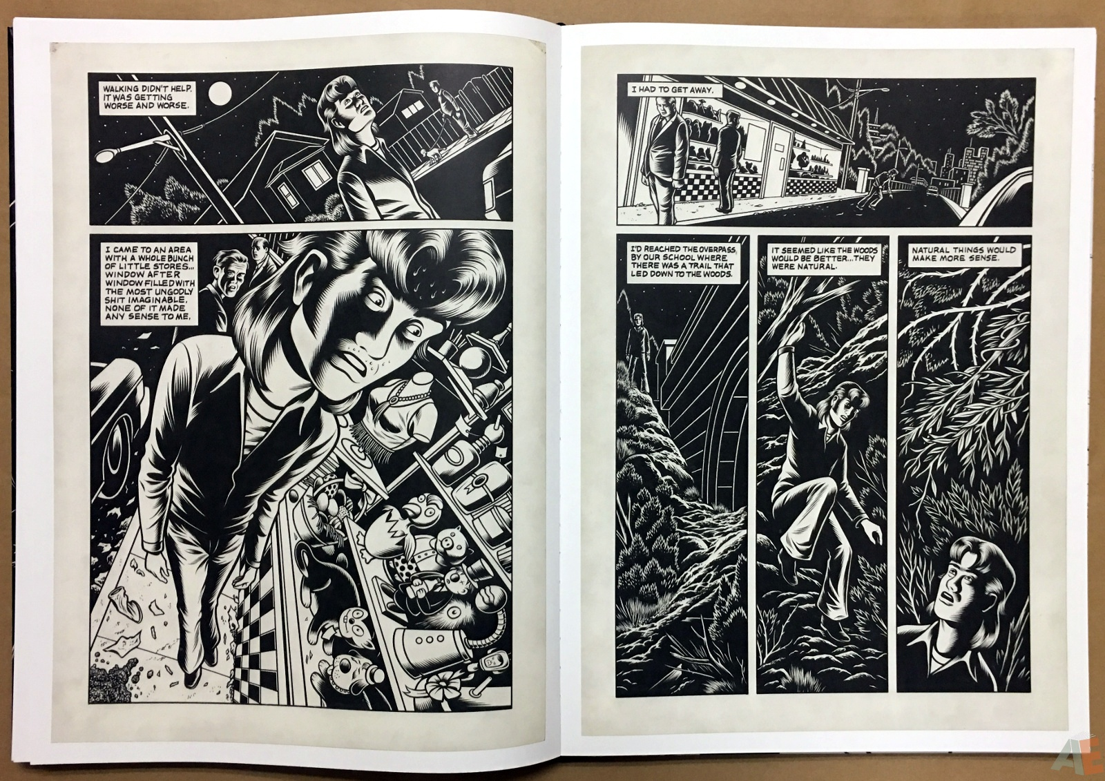 Fantagraphics Studio Edition: Black Hole By Charles Burns 28