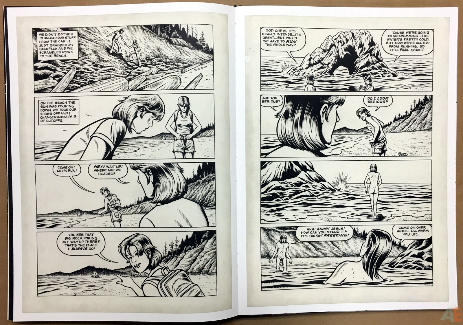 Fantagraphics Studio Edition: Black Hole By Charles Burns 30