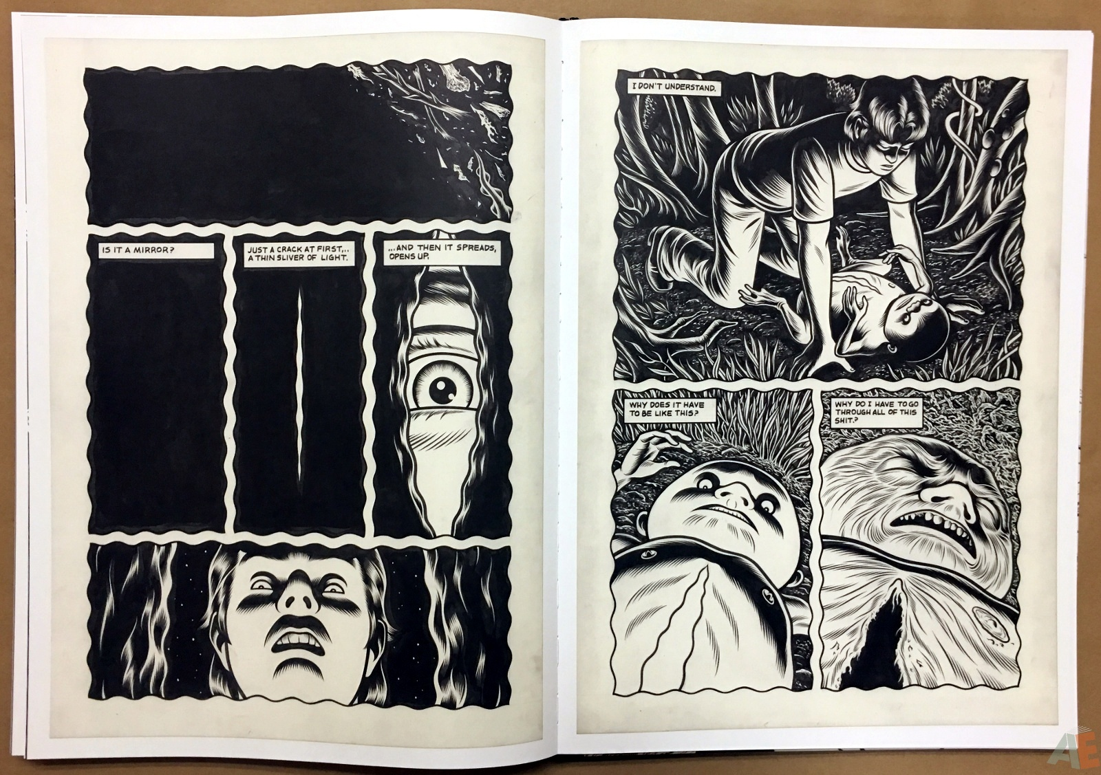 Fantagraphics Studio Edition: Black Hole By Charles Burns 32