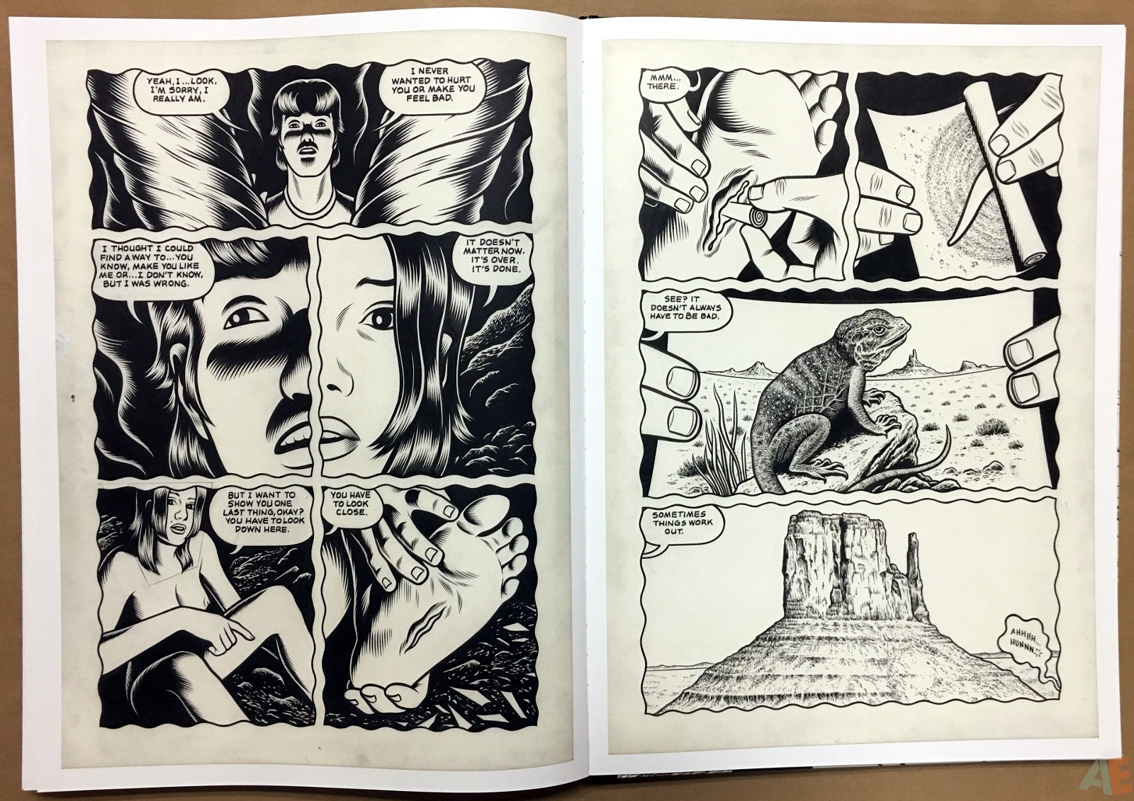 Fantagraphics Studio Edition: Black Hole By Charles Burns 34