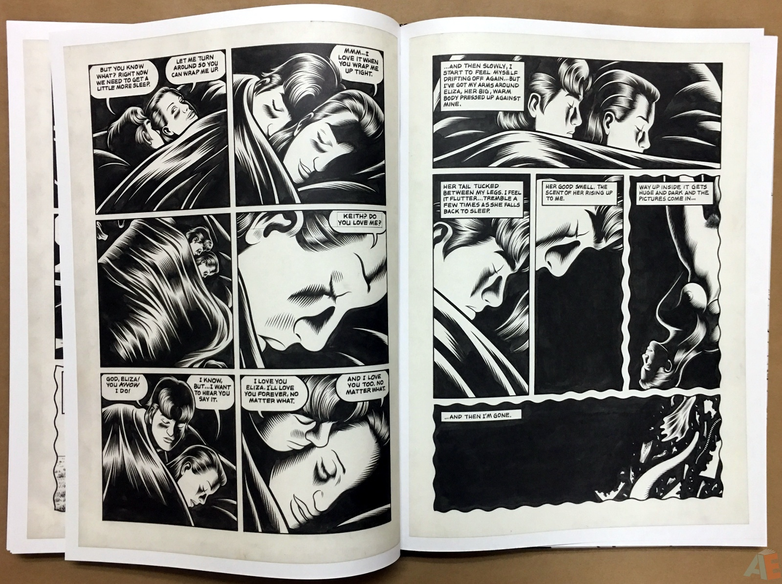 Fantagraphics Studio Edition: Black Hole By Charles Burns 36