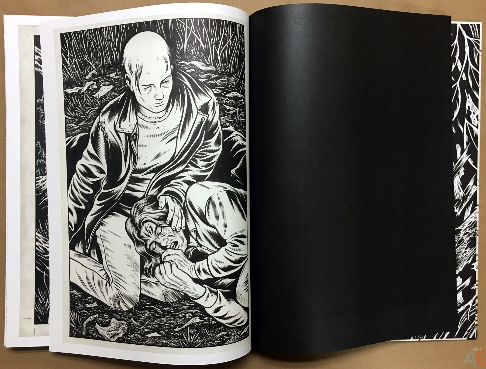 Fantagraphics Studio Edition: Black Hole By Charles Burns 40