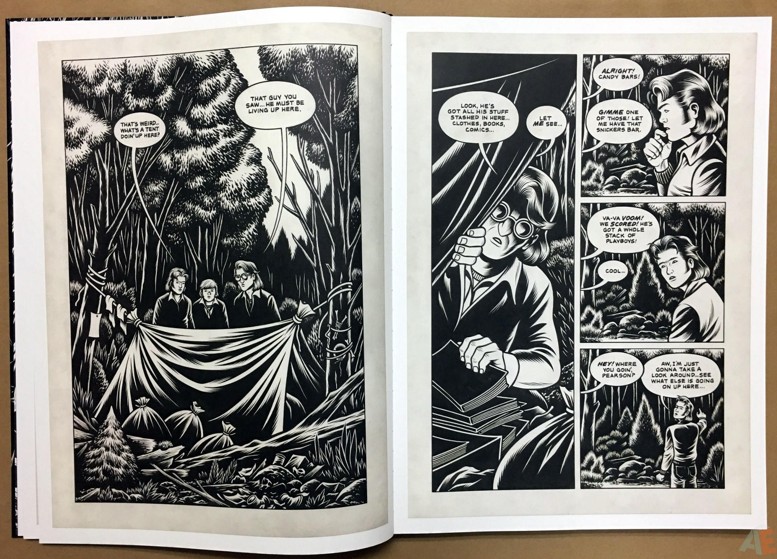 Fantagraphics Studio Edition: Black Hole By Charles Burns 8