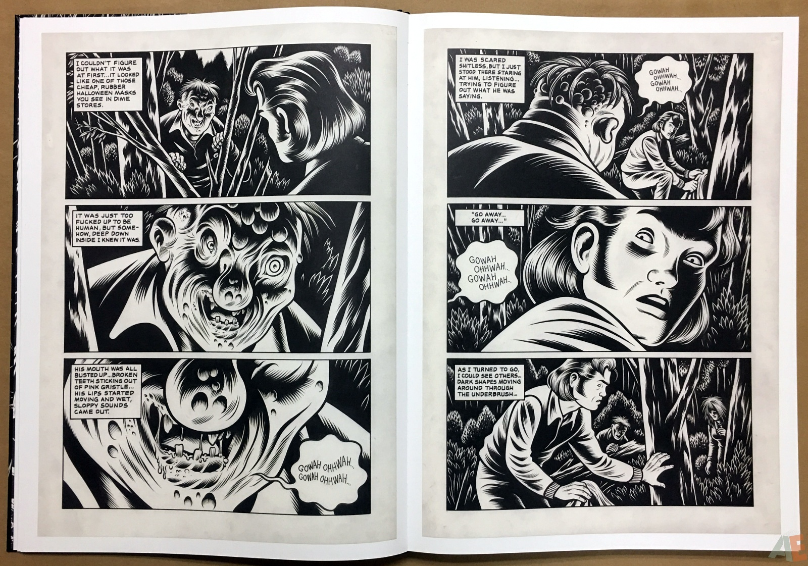Fantagraphics Studio Edition: Black Hole By Charles Burns 10