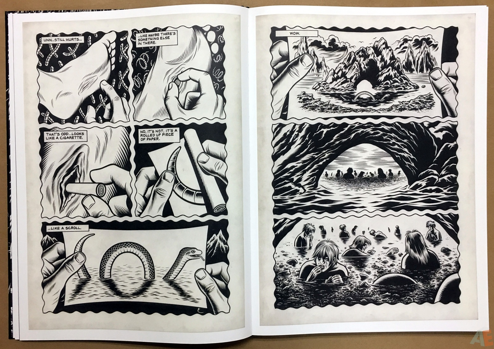 Fantagraphics Studio Edition: Black Hole By Charles Burns 12