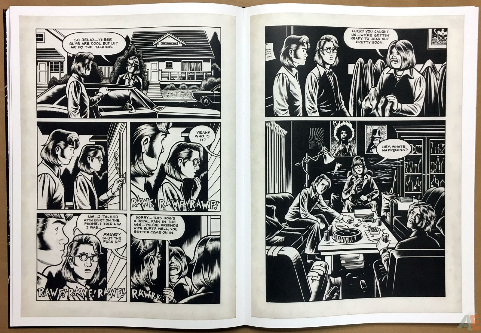 Fantagraphics Studio Edition: Black Hole By Charles Burns 16