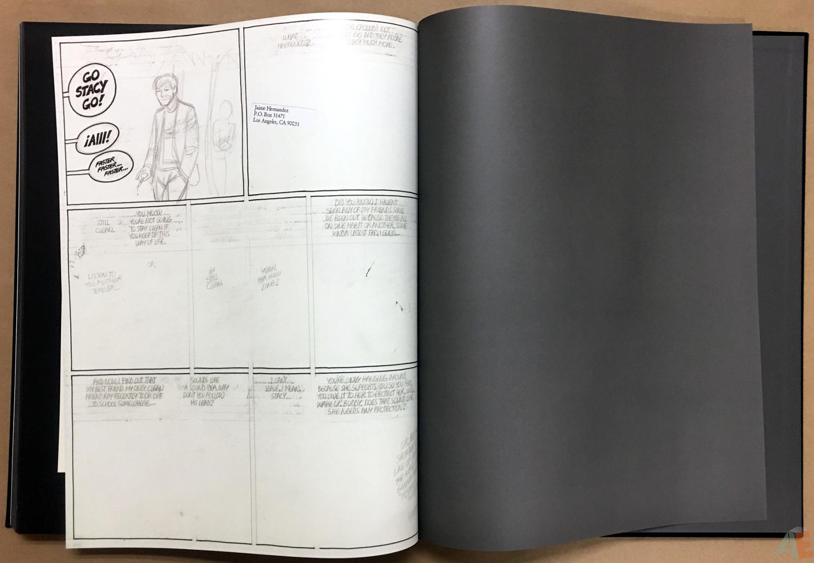 Fantagraphics Studio Edition: Jaime Hernandez 54
