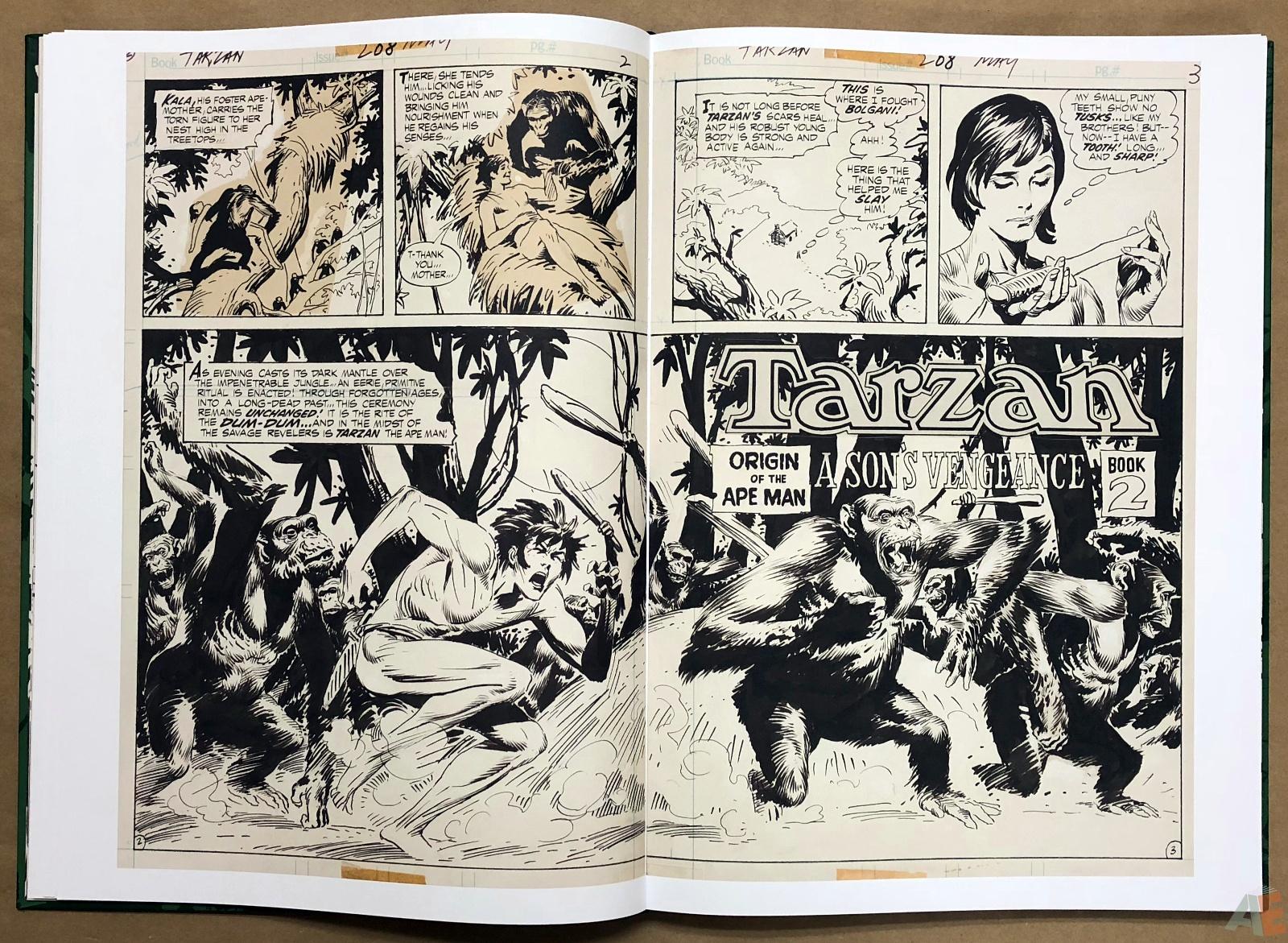 Joe Kubert's Tarzan of the Apes Artist's Edition 18