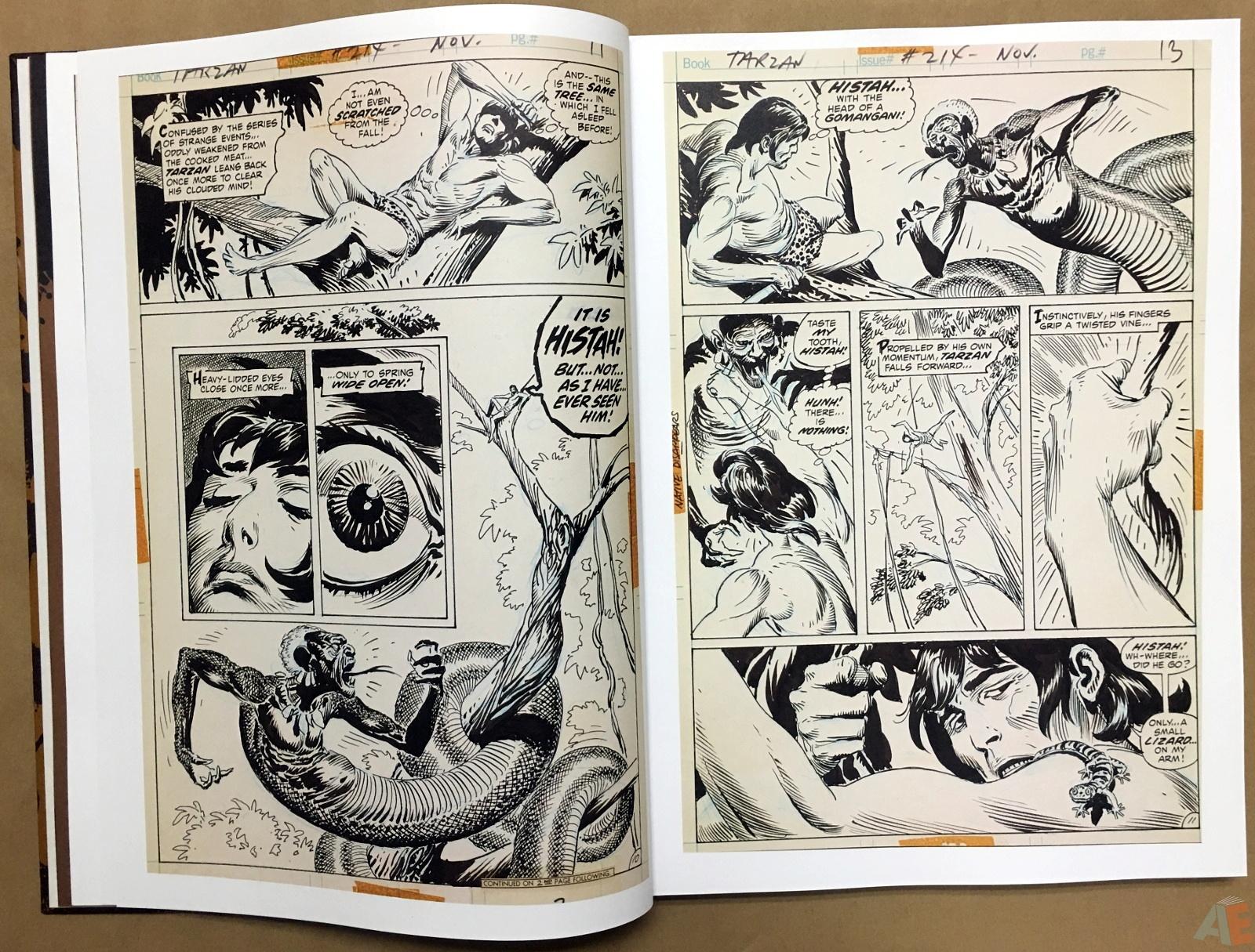 Joe Kubert's The Return Of Tarzan Artist's Edition 10