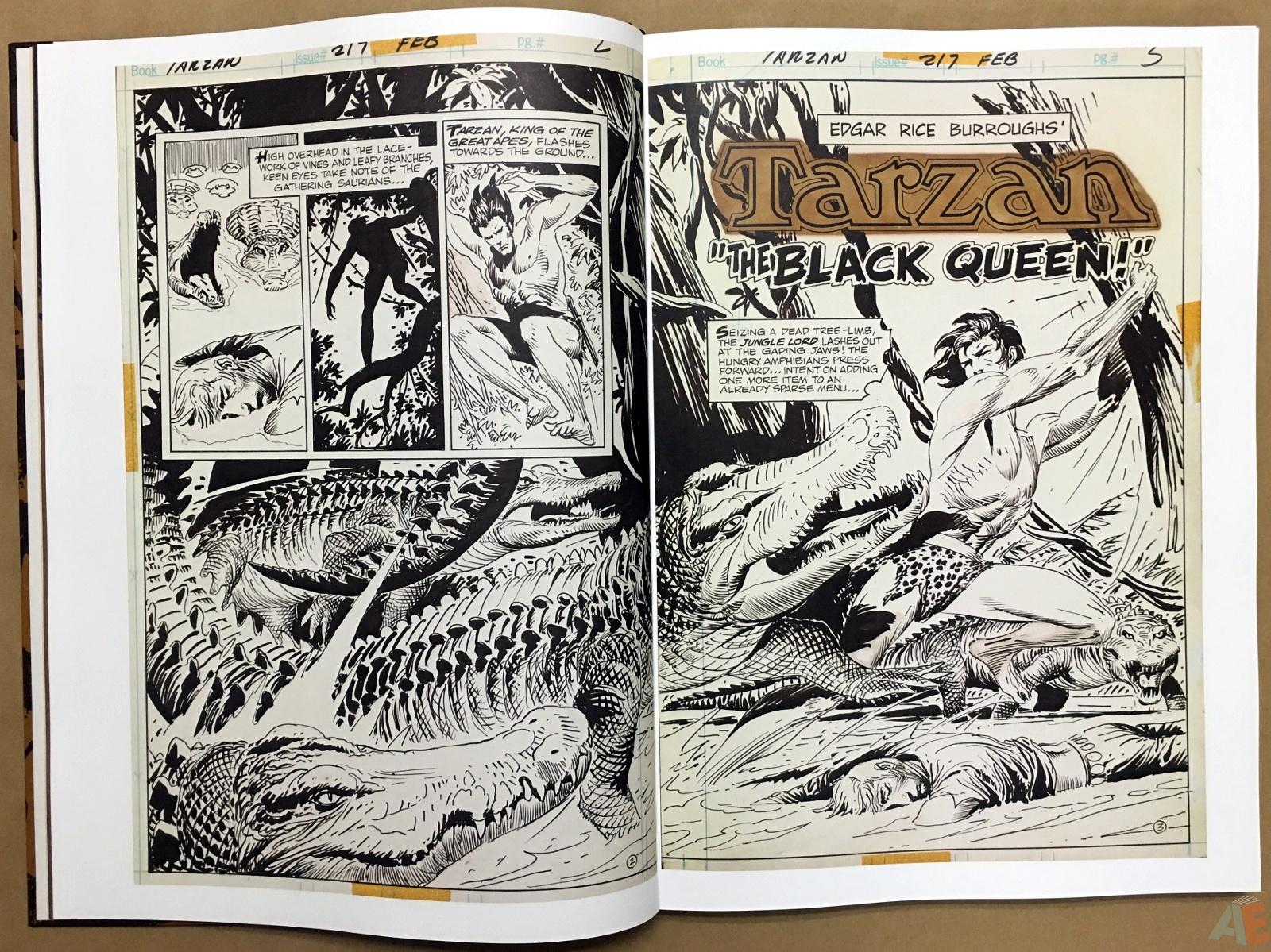 Joe Kubert's The Return Of Tarzan Artist's Edition 14