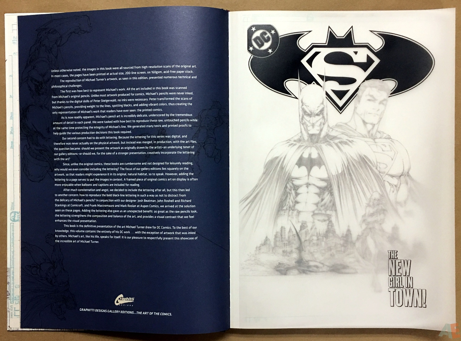 Superman/Batman: Michael Turner Gallery Edition 8