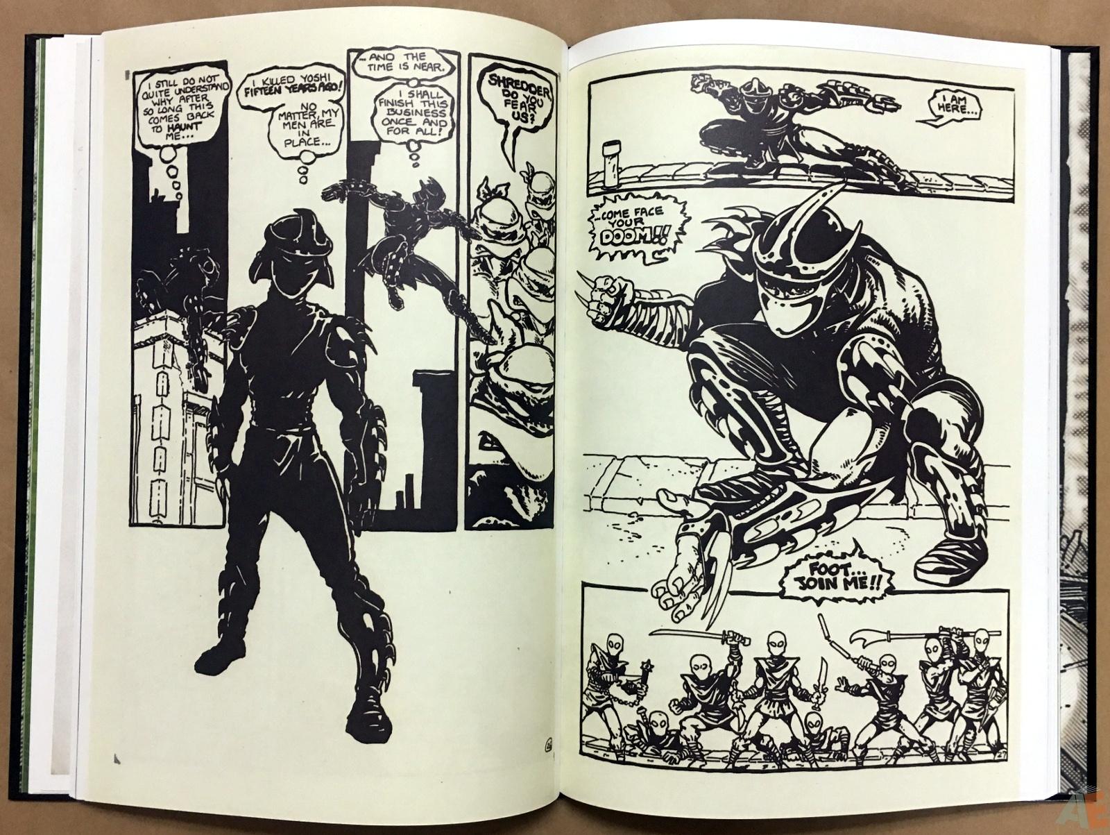 Teenage Mutant Ninja Turtles Artisan Edition 22