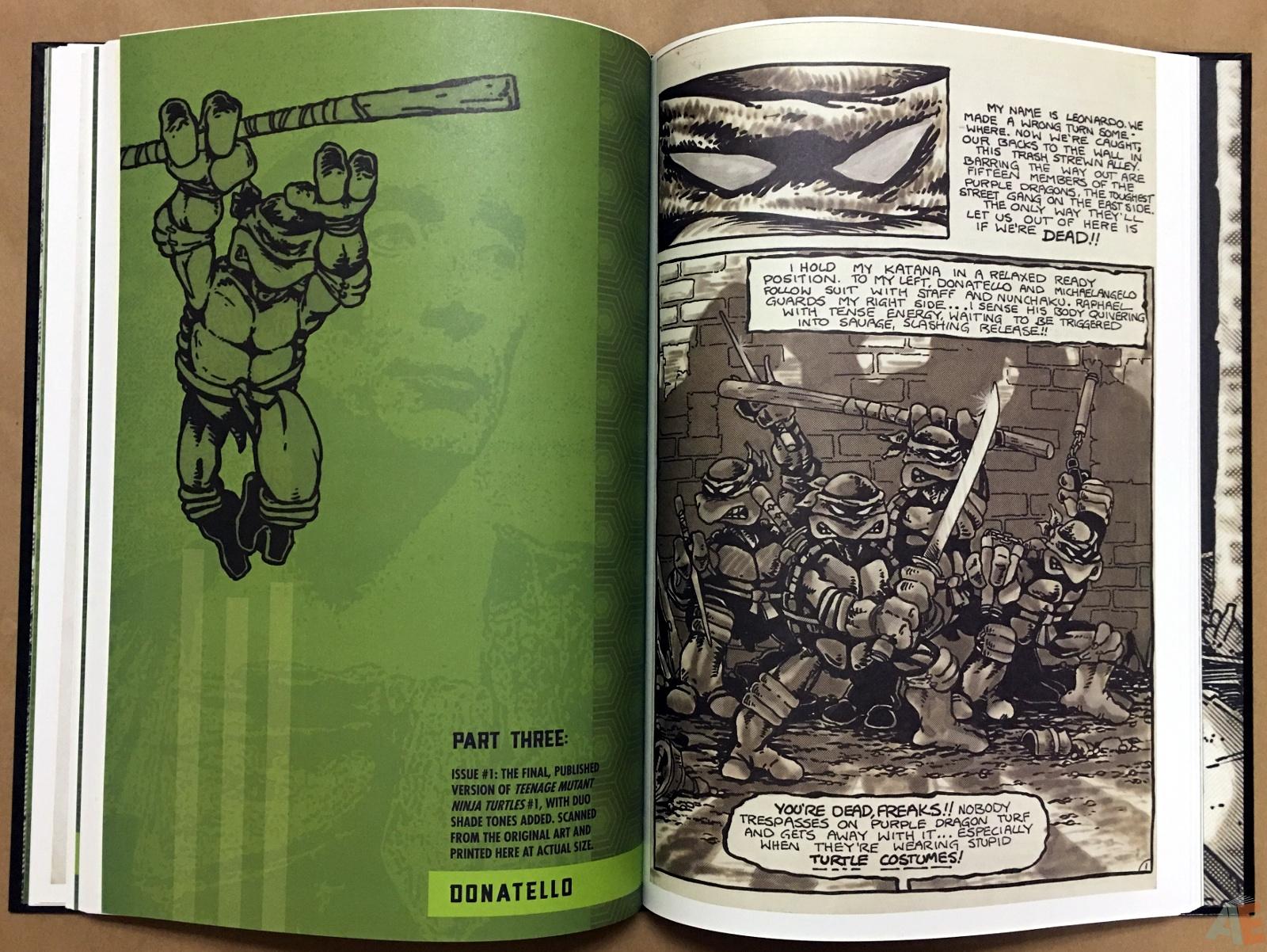 Teenage Mutant Ninja Turtles Artisan Edition 26