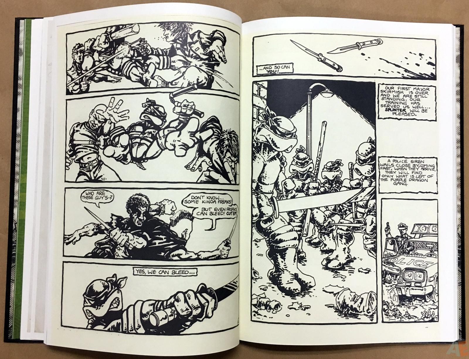 Teenage Mutant Ninja Turtles Artisan Edition 20