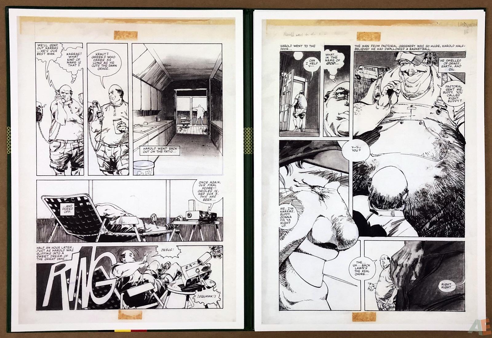 Walter Simonson's Lawnmower Man: Artist's Edition Portfolio 12