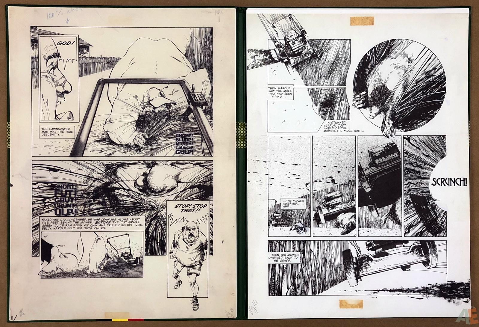 Walter Simonson's Lawnmower Man: Artist's Edition Portfolio 16