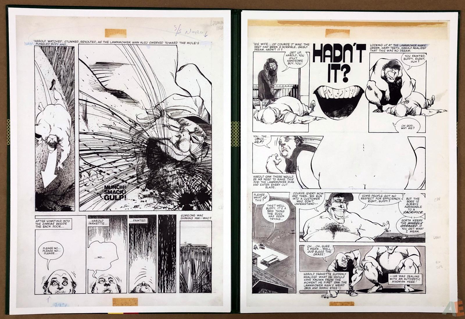 Walter Simonson's Lawnmower Man: Artist's Edition Portfolio 18