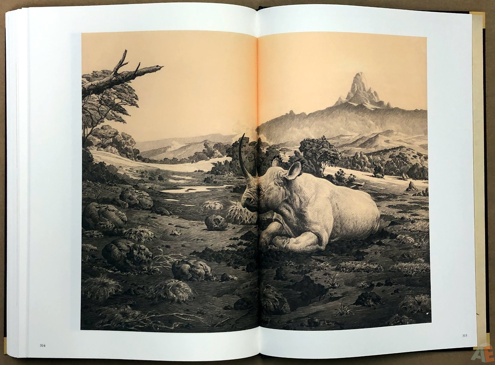 Roy G. Krenkel: Father of Heroic Fantasy - A Centennial Celebration 61