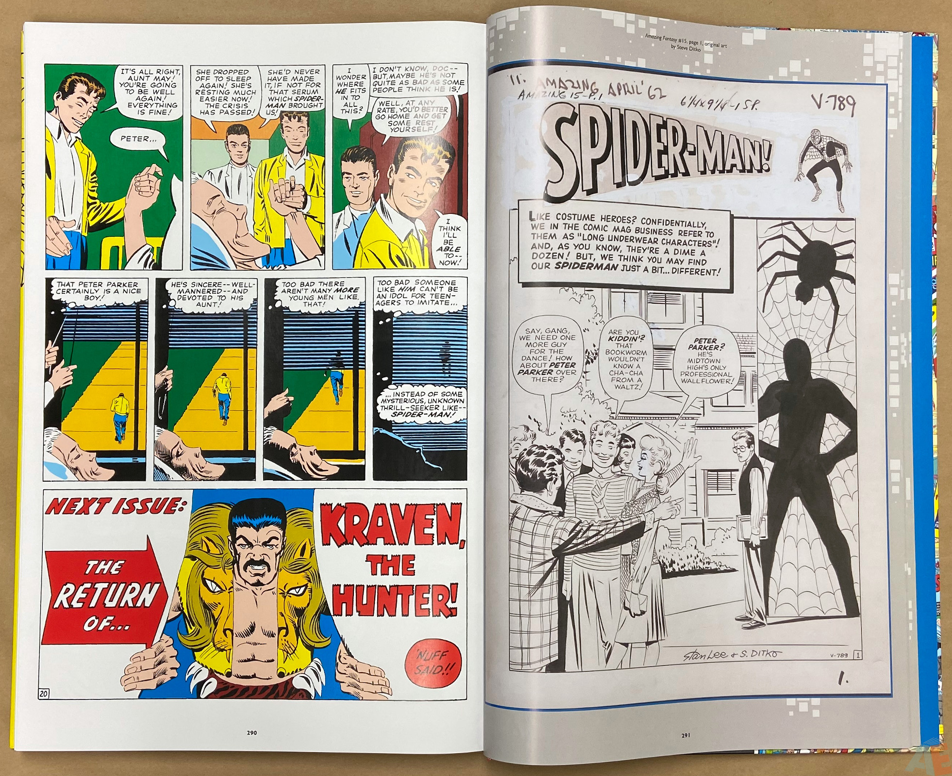 Ditko Is... Amazing King Size interior 1