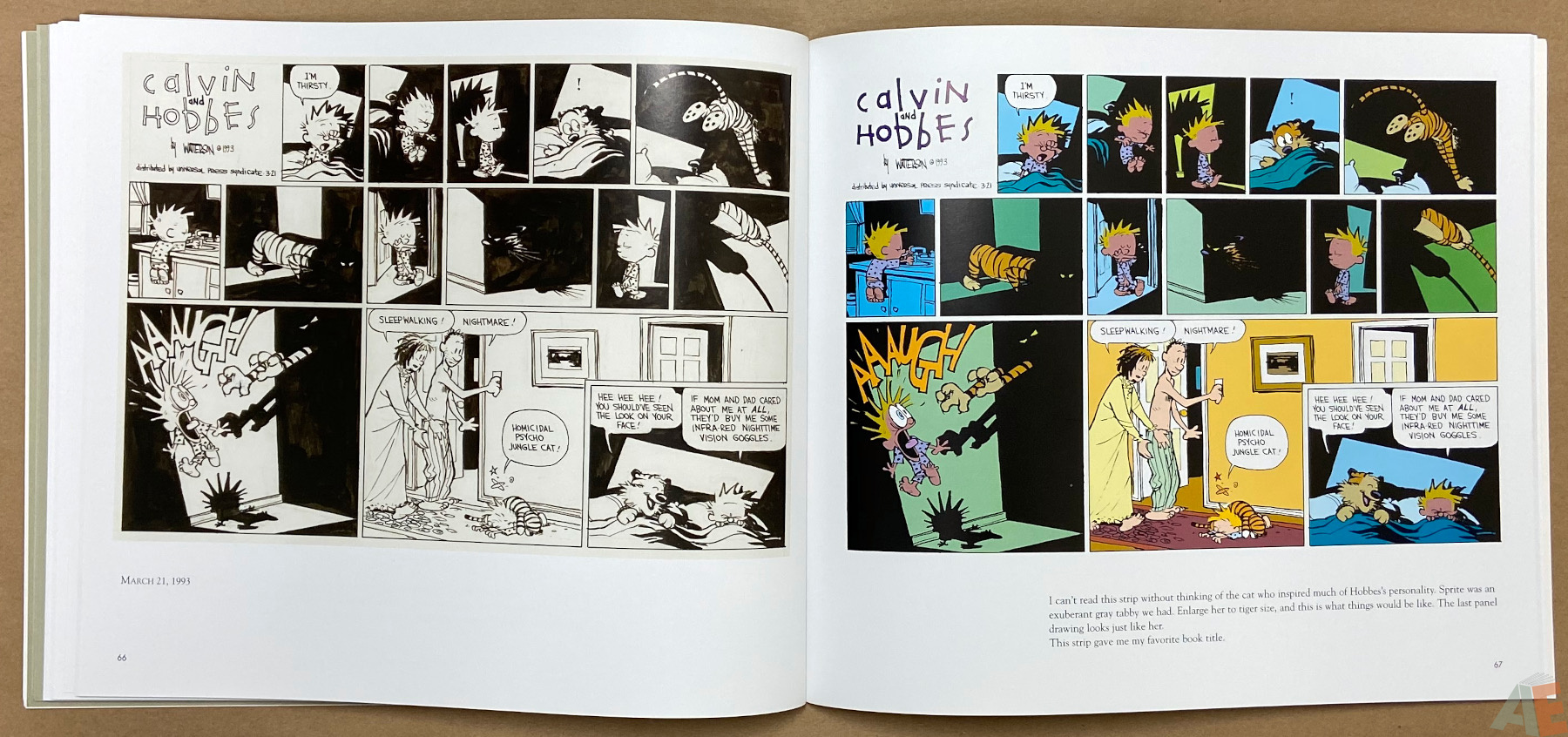 Calvin and Hobbes Sunday Pages 1985 1995 interior 7
