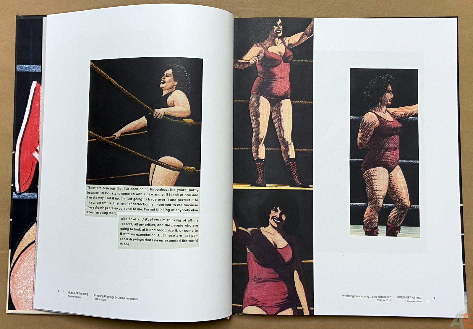 Queen of the Ring Wrestling Drawings by Jaime Hernandez 1980 2020 interior 2